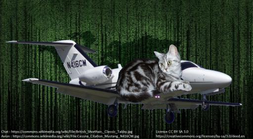 Un chat, un avion, un fond à la Matrix. Parce que pourquoi pas.